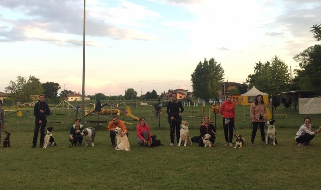 Corso di Rally Obedience