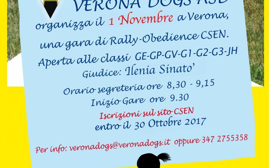 GARA DI RALLY OBEDIENCE 01/11/2017
