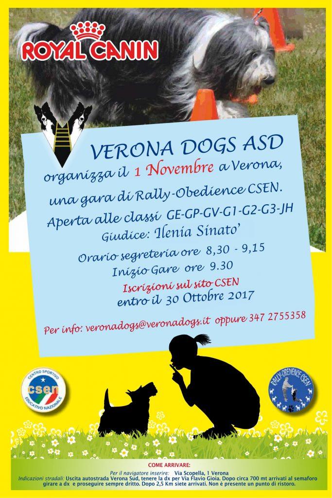 Locandina rally o 01112017-